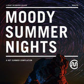 Moody Summer Nights by Various Artists