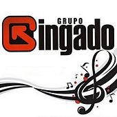 Grupo Gingado (Ao Vivo) de Grupo Gingado