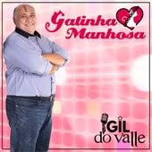 Gatinha Manhosa de Gil do  Valle