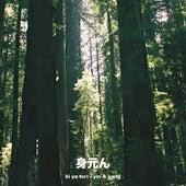 yin & yang von Various Artists