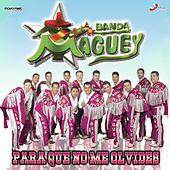Para Que No Me Olvides de Banda Maguey