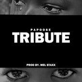 Tribute von Papoose