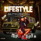 Lifestyle de Various Artists