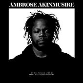 on the tender spot of every calloused moment by Ambrose Akinmusire