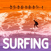 Surfing de Various Artists