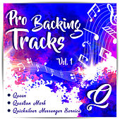 Pro Backing Tracks Q by Pop Music Workshop