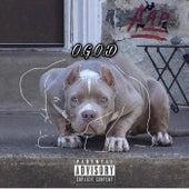 O.G.O.D von OG O-Dogg