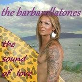 The Sound of Love by The Barbarellatones
