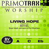 Living Hope (Performance Tracks) - EP by Oasis Worship