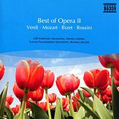 Best Of Opera Ii by Various Artists