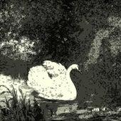 Strange Days are Coming Soon von Percy Faith