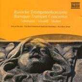 Baroque Trumpet Concertos by Niklas Eklund