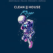 CLEAN HOUSE de Roque