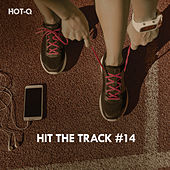 Hit The Track, Vol. 14 by Hot Q