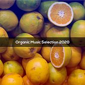 Organic Music Selection 2020 de Pezzaioli