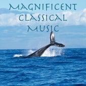 Magnificent Classical Music de Various Artists