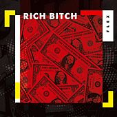 rich bitch lofi mix de Flex