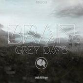 Grey Days by Brain