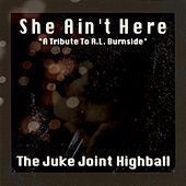She Ain't Here: A Tribute to R.L. Burnside de The Juke Joint Highball