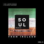 Soul Music from Ireland, Vol. 2 by Lepricorns