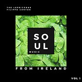 Soul Music from Ireland, Vol. 1 by Lepricorns