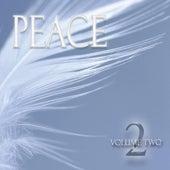 Peace - Volume 2 by Bart de Krijger