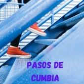 Pasos de Cumbia de El Halcón De La Sierra, Aaron y Su Grupo Ilusión, Grupo Pegasso, Banda Cuisillos, Tropical Panama, Los Bondadosos