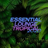 Essential Lounge Tropical 2020 (Electronic Lounge Music Tropical 2020) by Various Artists