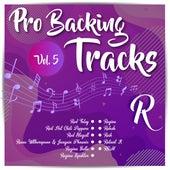 Pro Backing Tracks R, Vol.5 by Pop Music Workshop