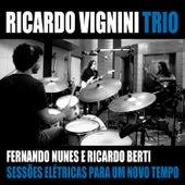 Sessões Elétricas para um Novo Tempo de Ricardo Vignini