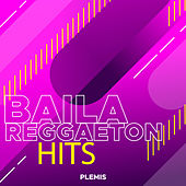 Baila Reggaeton Hits de Various Artists