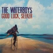 The Soul Singer de The Waterboys