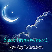 Sleep Improvement New Age Relaxation by Various Artists