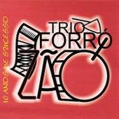 10 Anos de Sucesso von Trio Forrozão