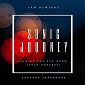 Sonic Journey de Sam Newsome