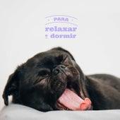Para Relaxar e Dormir de Various Artists