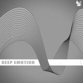 Deep Emotion ; Vol.13 de Various Artists