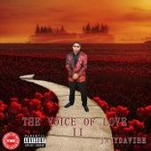 The Voice Of Love 2 de JayyDaVibe