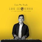 Cómo Me Duele de Luigi Echeverría