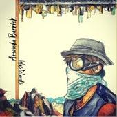 Wastelands by Amanda Barrick