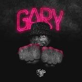 Gary (Instrumental) de Funky Flu