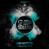 DS2B Collective Volume 1 by Various Artists