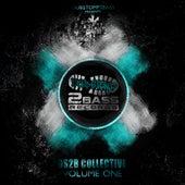 DS2B Collective Volume 1 de Various Artists