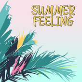 Summer Feeling von Various Artists