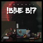 !B!HE B!7 by Bushali