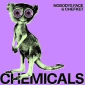Chemicals di Nobodys Face