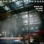 Hypnotized Warehouse de Mechanic Slave
