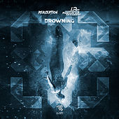 Drowning de Twelve Sessions