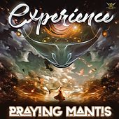 Experience by Praying Mantis