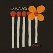 Burn von AJ Mitchell